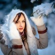 Winter Girl — Stock Photo #22864850