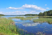Finland, the country of clean lakes — Stock Photo