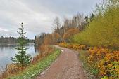 Tardo autunno in Finlandia — Foto Stock