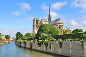 パリ。ノートルダム寺院 — ストック写真