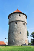 Tallinn, Estonia. Medieval tower Kiek-in-de-Kok — Stock Photo