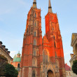 Wroclaw Cathedral  at sunset — Stock Photo