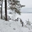 Finland in winter — Stock Photo