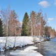 Stock fotografie: Early spring in Imatra, Finland