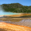 Stock Photo: Landscape and Geysers of Yellowstone National Park