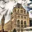 Natural History Museum in London - Building Exterior - Stock Photo