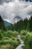 Dolomites Park in Italy beautiful Landscape — Stock Photo