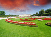 Vienna, Austria - Schoenbrunn Gardens flowers shapes, a UNESCO W — Stock Photo