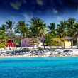 Beautiful beach of caribbean island with brilliant red, pink and — Stock Photo #13474584