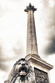 Bronze sculpture of a lion in Trafalgar Square, London on a typi — Stock Photo