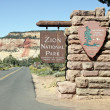 Zion National Park — Stock Photo #14061068