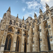 The Westminster Abbey church in London, UK - Side view — Stock Photo #14064090