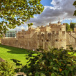 Tower of London ancient architecture with gardens - UK. — Stock Photo #14472845