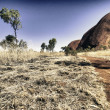Australian Outback Exploration — ストック写真