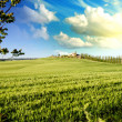 Stock Photo: Meadows of Tuscany in Spring Season