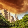 New York City - Manhattan Skyscrapers from Central Park — Stock Photo #15749311