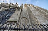Paris. Gorgeous view of Notre Dame facade. — Stockfoto