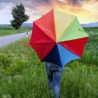 Colorful umbrella over a Green Field - Stock Photo