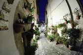 Ancient Architecture of Spello in Umbria — Stock Photo