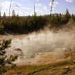 Yellowstone Geyser - Foto Stock