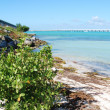 Bahia Honda state park inside Florida Keys — Stock Photo