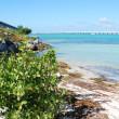 Bahia Honda state park inside Florida Keys — Stock Photo