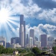 Stock Photo: Chicago. Beautiful skyline with vegetation and skyscrapers