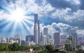V chicagu. krásné panorama s mrakodrapy a vegetace — Stock fotografie