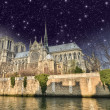 Paris. Beautiful night view of Notre Dame Cathedral and Seine Ri — Stock Photo