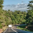 Stock Photo: Roads and vegetation of Queensland