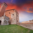 Pisa. Wonderful view at sunset of ancient Citadel Tower - Stok fotoğraf
