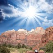Zion Park, USA. Beautiful colors and typical red street — Stock Photo #21702675