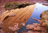 Australian Outback — Zdjęcie stockowe