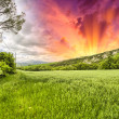 spring colors of tuscany - meadows and hills at sunset — Stock Photo