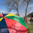 Colorful Umbrella with ancient bridge in background - Stockfoto