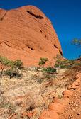 Australský outback — Stock fotografie