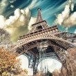 Wonderful street view of Eiffel Tower and Winter Vegetation - Paris — Stock Photo