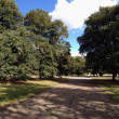 Hyde Park panoramic view in London - Stock Photo