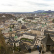 Beautiful Salzburg skyline, Austria — Stock Photo #25143769