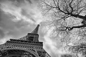 Beautiful view of Eiffel Tower with vegetation — Stock Photo