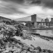 Stock Photo: The Brooklyn Bridge and Lower Manhattan skyline seen from Brookl