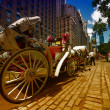 NEW YORK CITY - JUN 12: Horse Carriage near Central Park on 59th st — Stock Photo