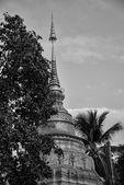 Chiang Mai, Thailand — Stock Photo
