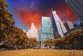 Beautiful upward view of Skyscrapers in Bryant Park, New York — Stock Photo