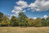 Wunderbare himmel über den hyde park mit schönen vegetation - london — Stockfoto