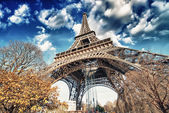 Wonderful street view of Eiffel Tower and Winter Vegetation - Pa — Stock Photo