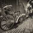 NEW YORK CITY - JUN 12: Horse Carriage near Central Park on 59th st. — Стоковая фотография