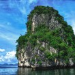 Island Vegetation in Thailand — Stock Photo #29272803