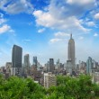 New York City. Stunning Manhattan skyline form a rooftop — Stock Photo #29459573