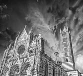 Siena, Italy. Wonderful view of Duomo, the Cathedral — Stock Photo